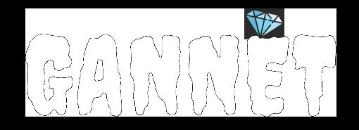 ギャンネット - GANNETのロゴ
